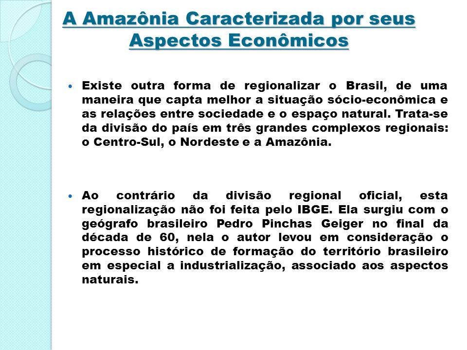 A Amazônia Caracterizada por seus Aspectos Econômicos Existe outra forma de regionalizar o Brasil, de uma maneira que capta melhor a situação sócio-ec