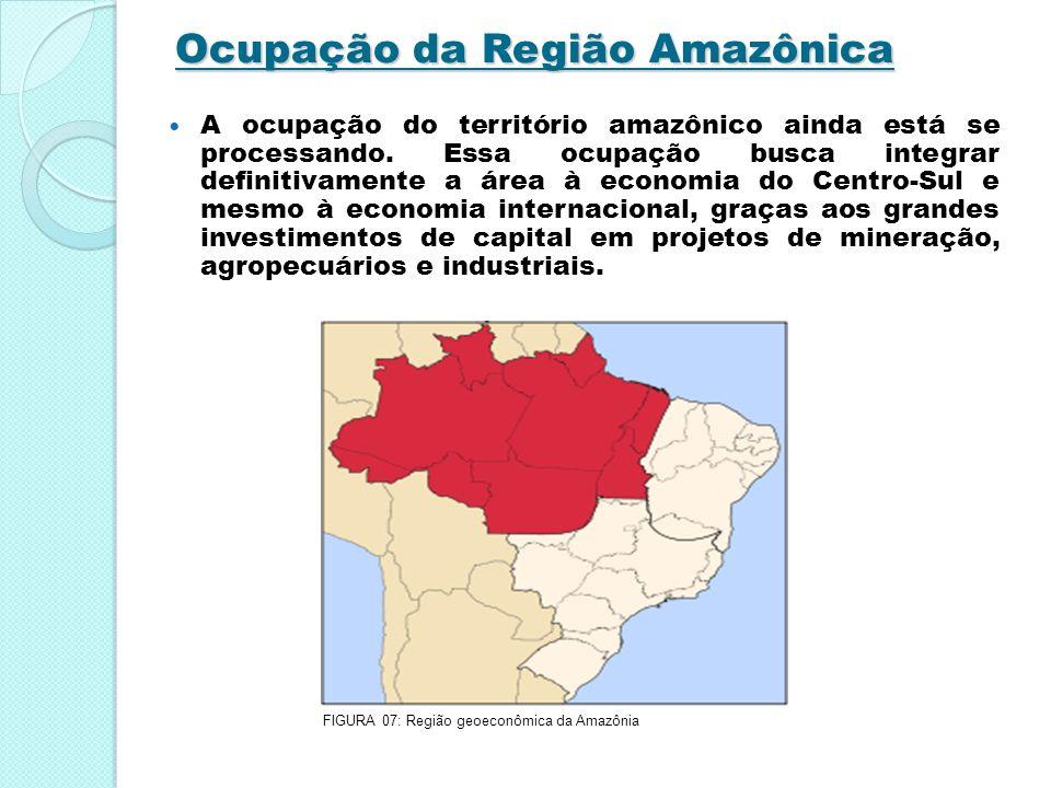 Ocupação da Região Amazônica A ocupação do território amazônico ainda está se processando. Essa ocupação busca integrar definitivamente a área à econo