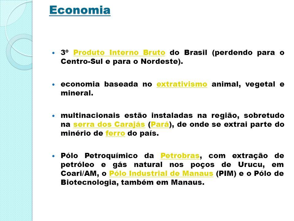 Economia 3º Produto Interno Bruto do Brasil (perdendo para o Centro-Sul e para o Nordeste).Produto Interno Bruto economia baseada no extrativismo anim