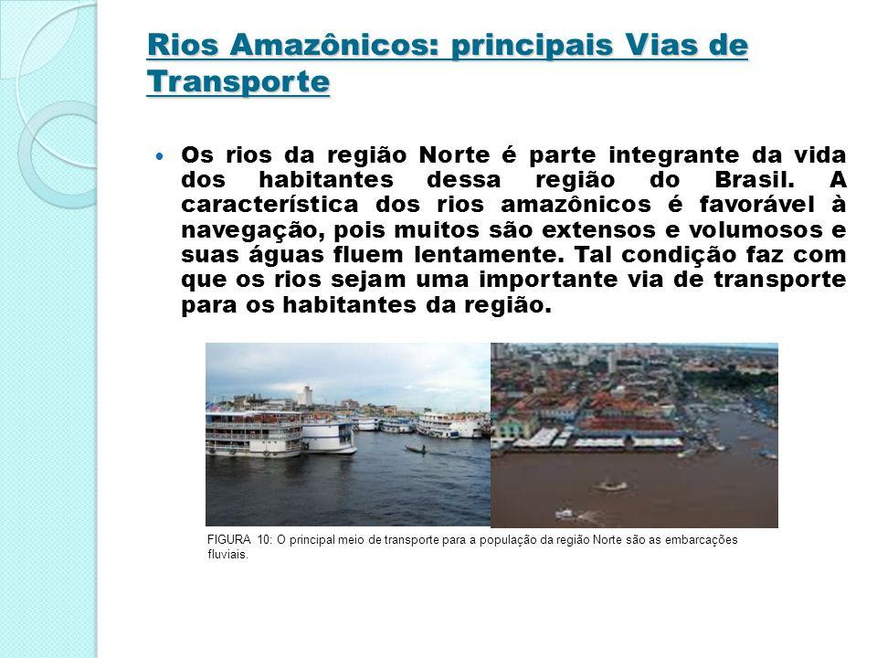 Rios Amazônicos: principais Vias de Transporte Os rios da região Norte é parte integrante da vida dos habitantes dessa região do Brasil. A característ