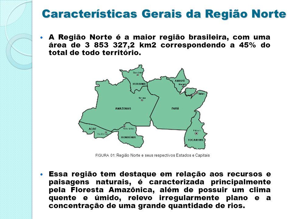 Características Gerais da Região Norte A Região Norte é a maior região brasileira, com uma área de 3 853 327,2 km2 correspondendo a 45% do total de to
