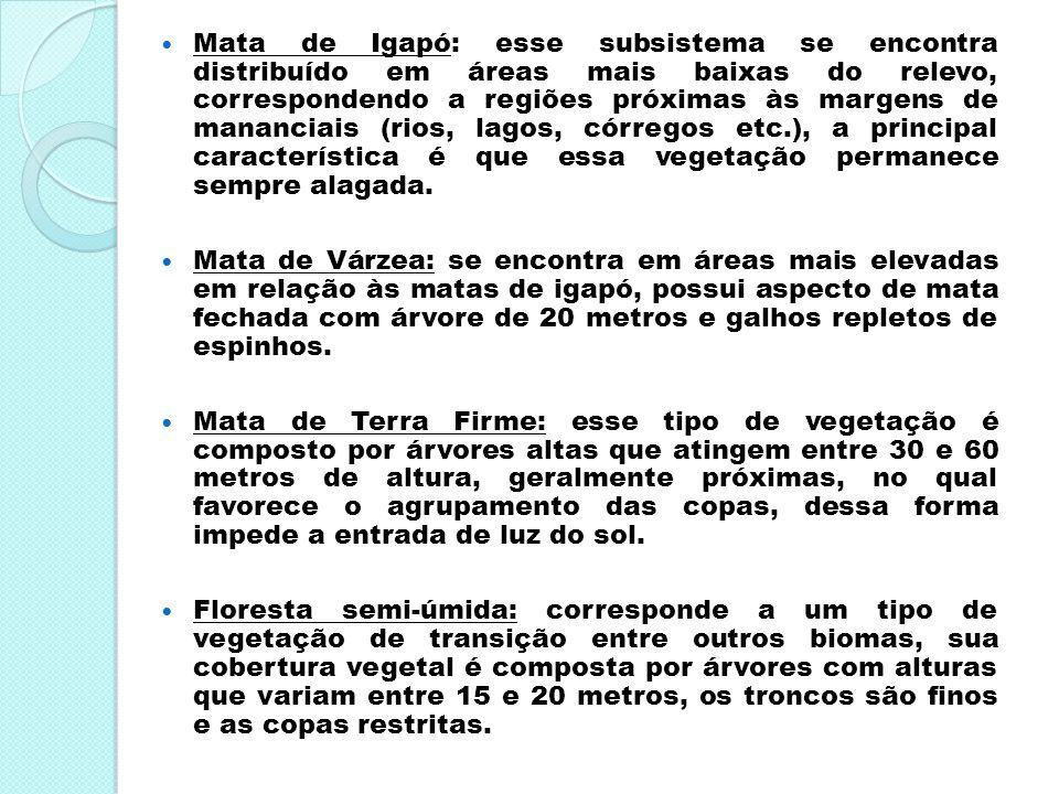 Mata de Igapó: esse subsistema se encontra distribuído em áreas mais baixas do relevo, correspondendo a regiões próximas às margens de mananciais (rio