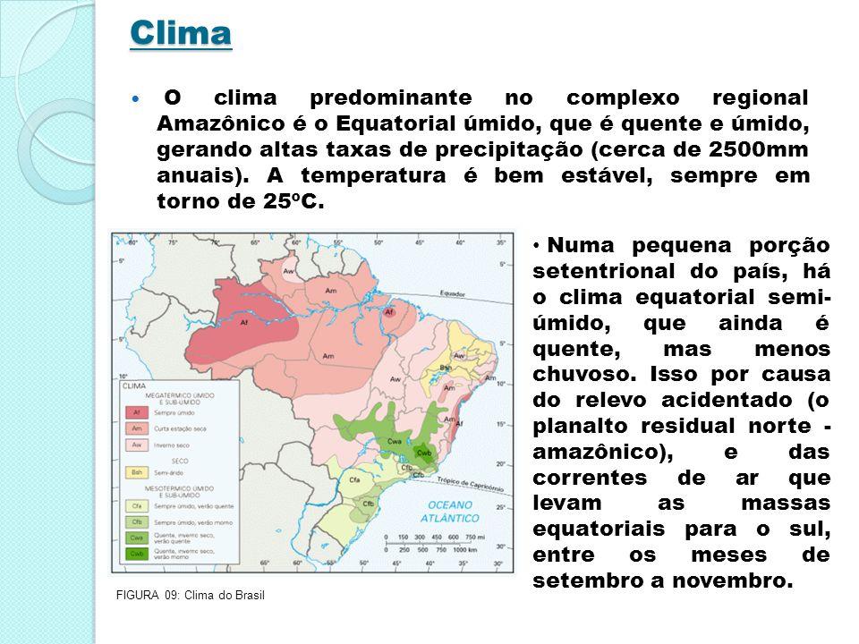 Clima O clima predominante no complexo regional Amazônico é o Equatorial úmido, que é quente e úmido, gerando altas taxas de precipitação (cerca de 25