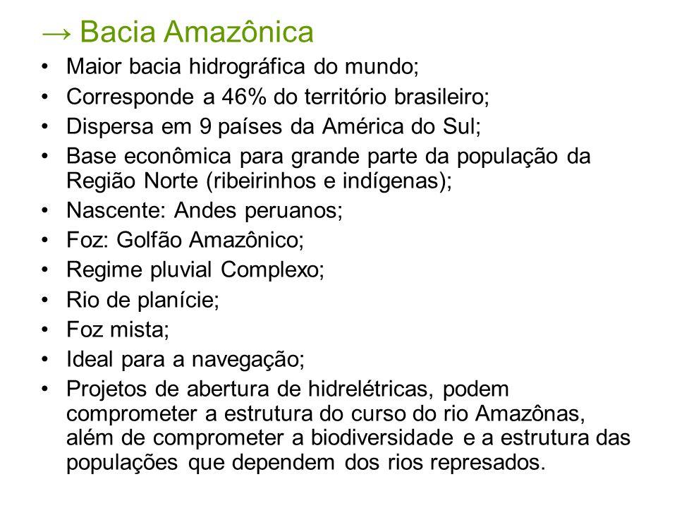Bacia Amazônica Maior bacia hidrográfica do mundo; Corresponde a 46% do território brasileiro; Dispersa em 9 países da América do Sul; Base econômica