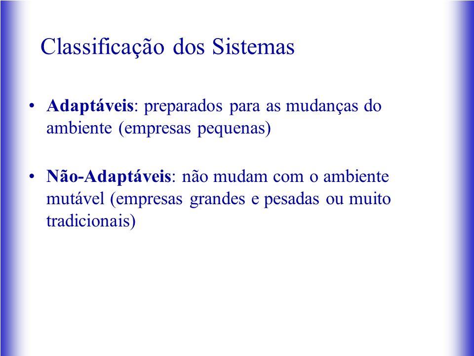 Classificação dos Sistemas Adaptáveis: preparados para as mudanças do ambiente (empresas pequenas) Não-Adaptáveis: não mudam com o ambiente mutável (empresas grandes e pesadas ou muito tradicionais)