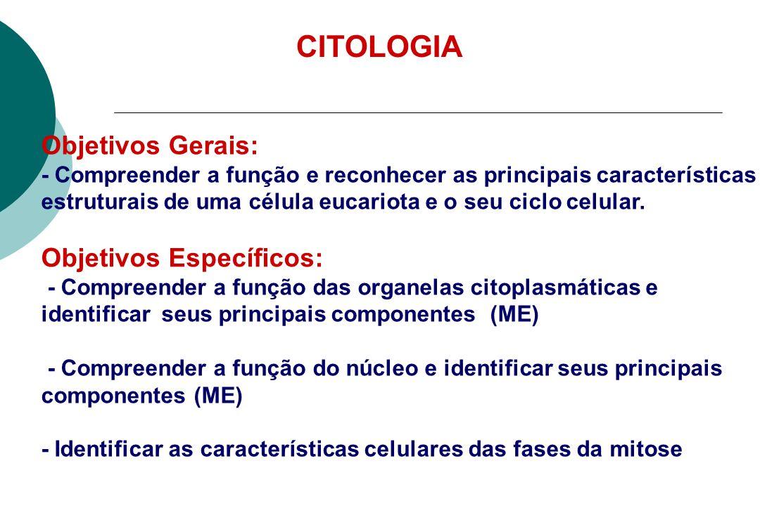 - Células: unidades funcionais e estruturais dos seres vivos - Grande variedade de animais, plantas fungos, bactérias - Dois tipos de células: bactérias