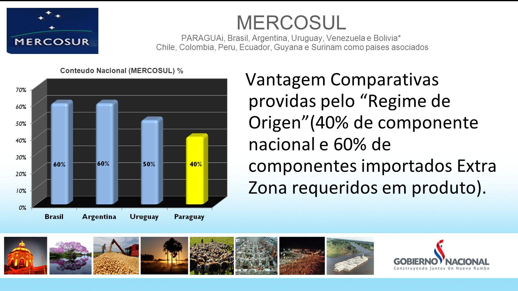 MERCOSUL PARAGUAi, Brasil, Argentina, Uruguay, Venezuela e Bolivia* Chile, Colombia, Peru, Ecuador, Guyana e Surinam como paises asociados Vantagem Co