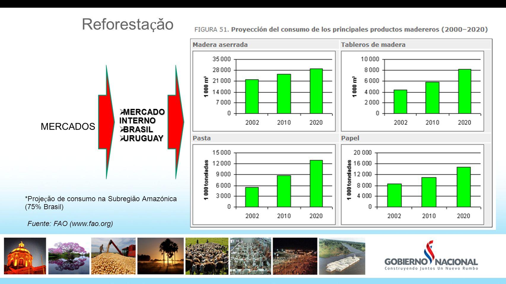 Reforesta ҫ ǎo MERCADO INTERNO MERCADO INTERNO BRASIL BRASIL URUGUAY URUGUAY MERCADOS Fuente: FAO (www.fao.org) *Proje ҫ ǎo de consumo na Subregiǎo Am