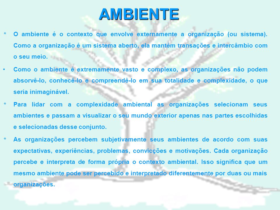 AMBIENTE * O ambiente é o contexto que envolve externamente a organização (ou sistema).