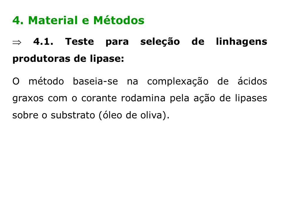 4. Material e Métodos 4.1. Teste para seleção de linhagens produtoras de lipase: O método baseia-se na complexação de ácidos graxos com o corante roda