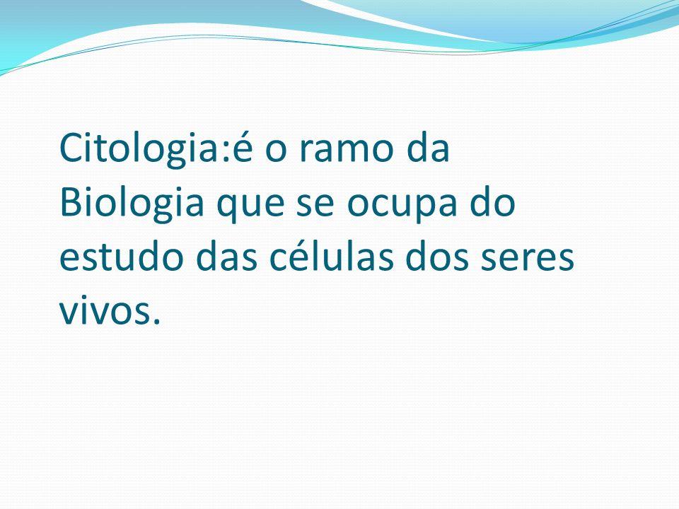 O reticulo endoplasmático é também chamado ergastoplasma, palavra originada do grego ergozomai, que significa elaborar, sintetizar.