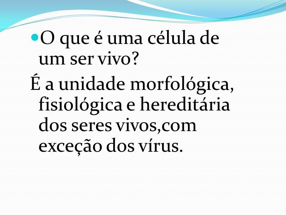 O que é uma célula de um ser vivo? É a unidade morfológica, fisiológica e hereditária dos seres vivos,com exceção dos vírus.