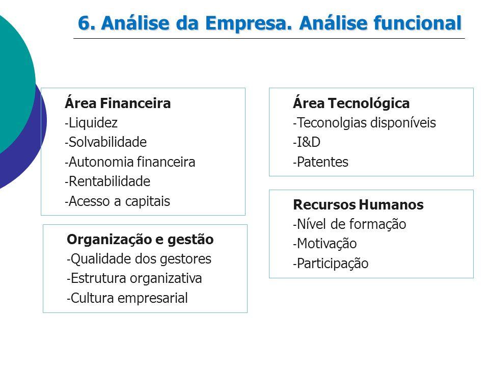 6. Análise da Empresa. Análise funcional Área Financeira - Liquidez - Solvabilidade - Autonomia financeira - Rentabilidade - Acesso a capitais Área Te