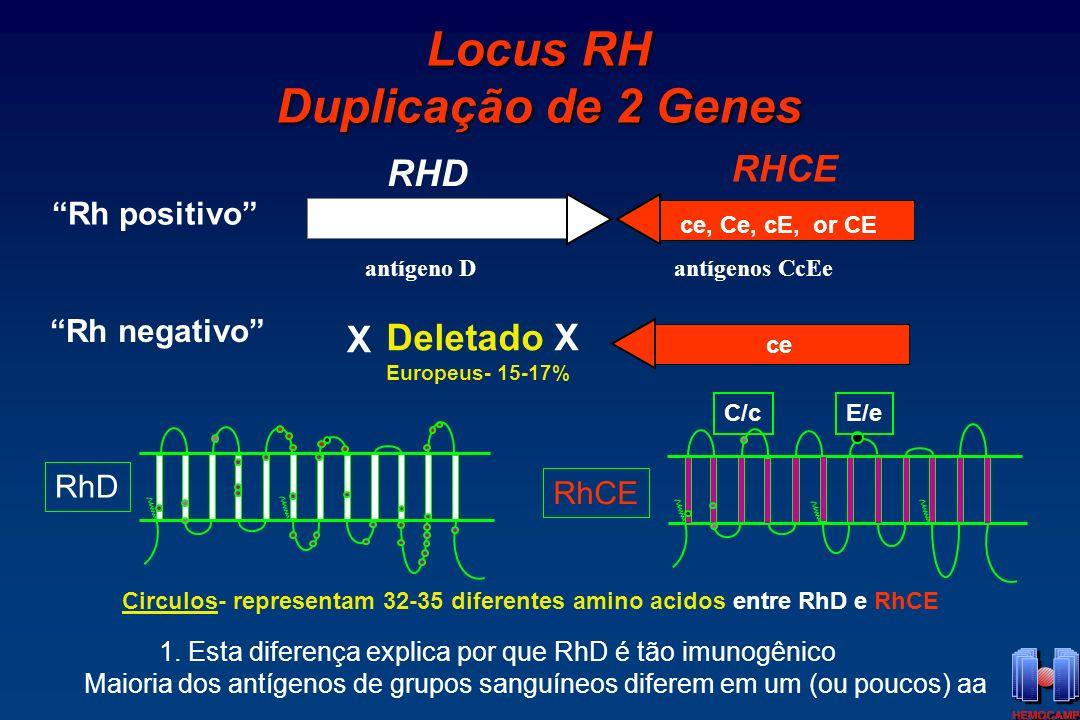 Caso Clínico Doador com 9 doações prévias Doador com 9 doações prévias Fenotipado como O RhD-neg em todas as doações Fenotipado como O RhD-neg em todas as doações Na 10 0 doação: Suspeita de D Fraco ou Del.