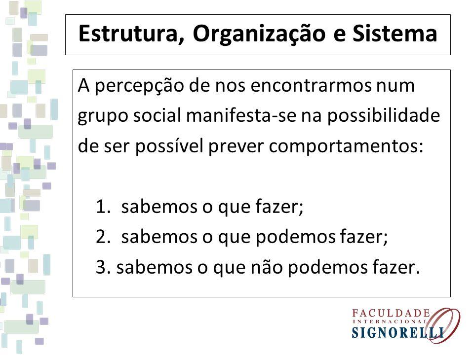 Estrutura, Organização e Sistema A percepção de nos encontrarmos num grupo social manifesta-se na possibilidade de ser possível prever comportamentos: