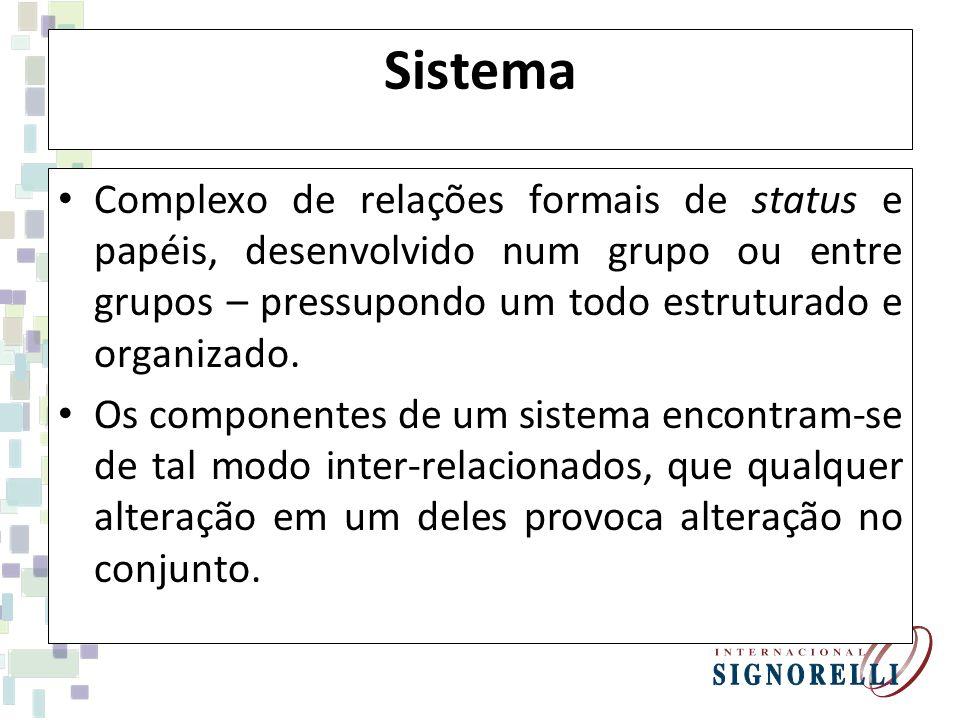 Sistema Complexo de relações formais de status e papéis, desenvolvido num grupo ou entre grupos – pressupondo um todo estruturado e organizado. Os com