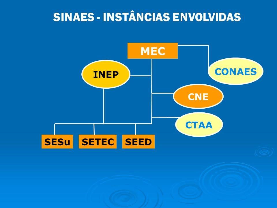 MEC SESuSETECSEED CNE CONAES INEP CTAA SINAES - INSTÂNCIAS ENVOLVIDAS