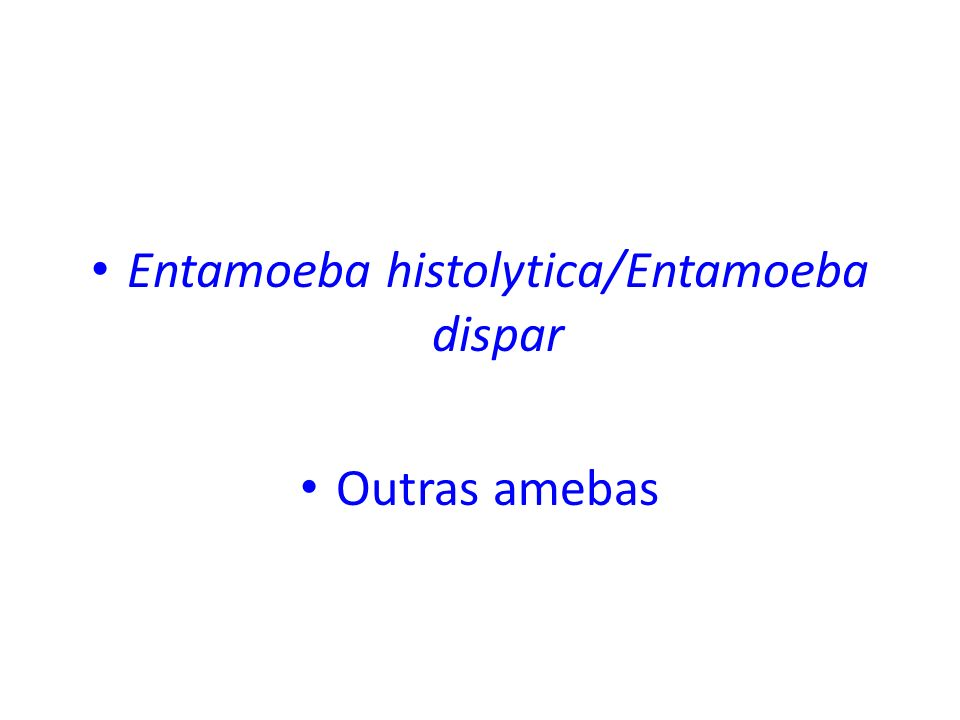 Entamoeba histolytica/Entamoeba dispar Outras amebas