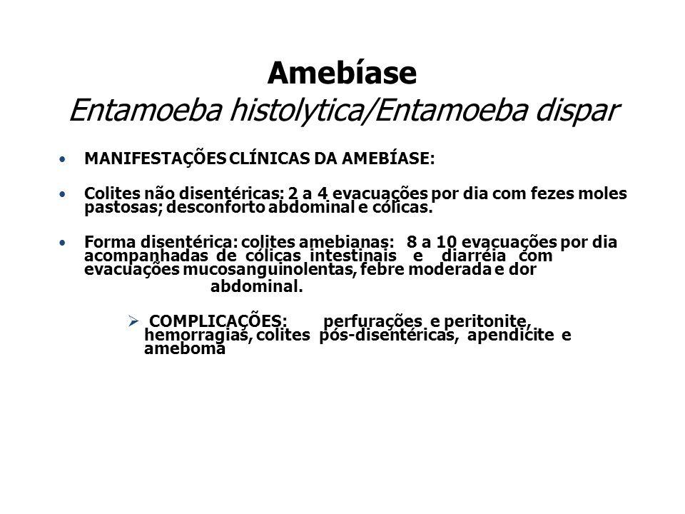 Amebíase Entamoeba histolytica/Entamoeba dispar MANIFESTAÇÕES CLÍNICAS DA AMEBÍASE: Colites não disentéricas: 2 a 4 evacuações por dia com fezes moles