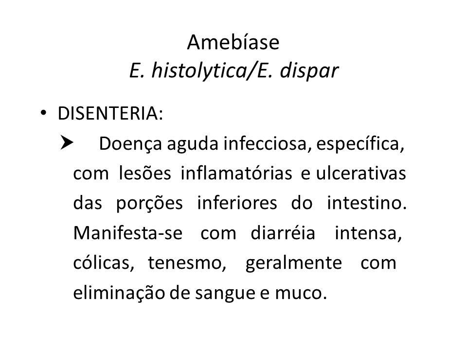 Amebíase E. histolytica/E. dispar DISENTERIA: Doença aguda infecciosa, específica, com lesões inflamatórias e ulcerativas das porções inferiores do in