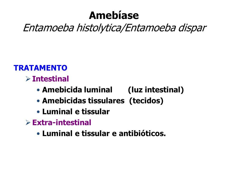 Amebíase Entamoeba histolytica/Entamoeba dispar TRATAMENTO Intestinal Amebicida luminal (luz intestinal) Amebicidas tissulares (tecidos) Luminal e tis
