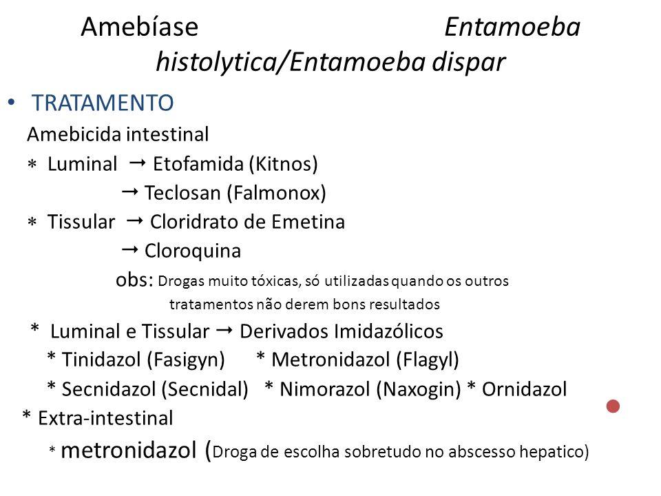 Amebíase Entamoeba histolytica/Entamoeba dispar TRATAMENTO Amebicida intestinal Luminal Etofamida (Kitnos) Teclosan (Falmonox) Tissular Cloridrato de