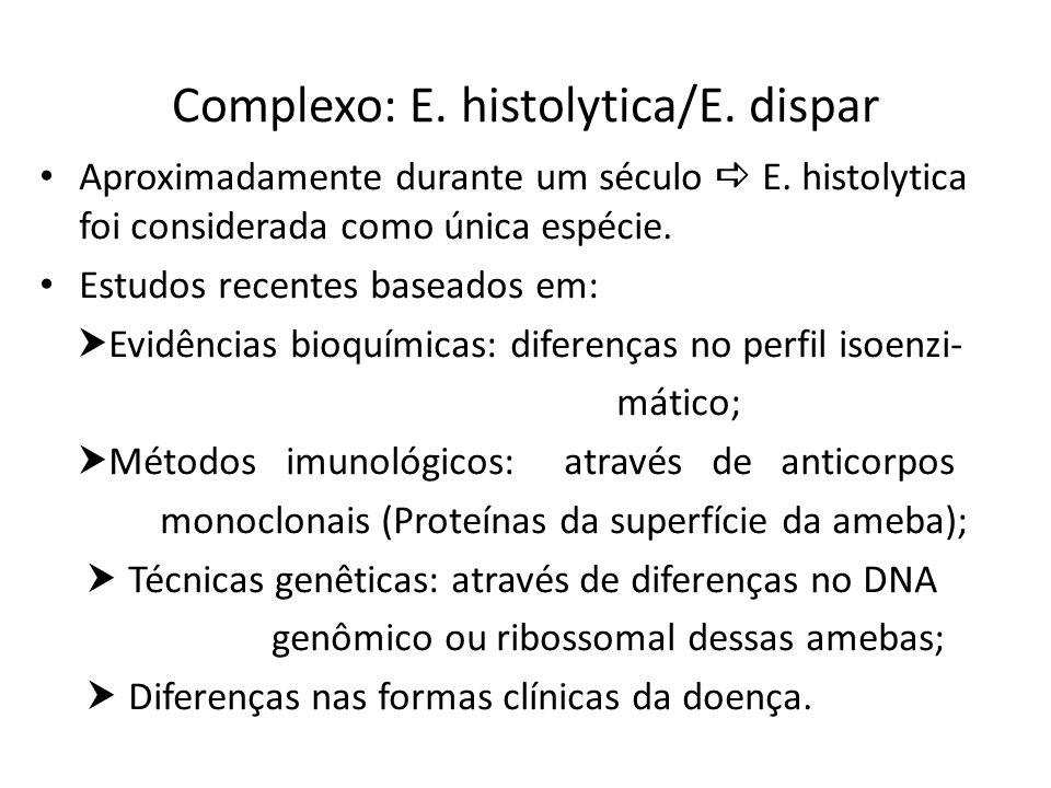 Complexo: E. histolytica/E. dispar Aproximadamente durante um século E. histolytica foi considerada como única espécie. Estudos recentes baseados em: