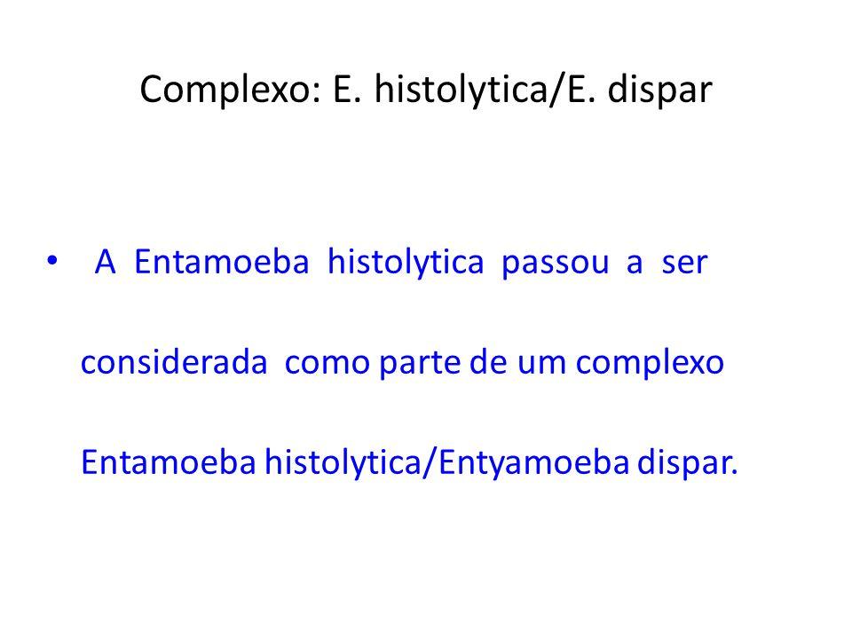 Complexo: E. histolytica/E. dispar A Entamoeba histolytica passou a ser considerada como parte de um complexo Entamoeba histolytica/Entyamoeba dispar.