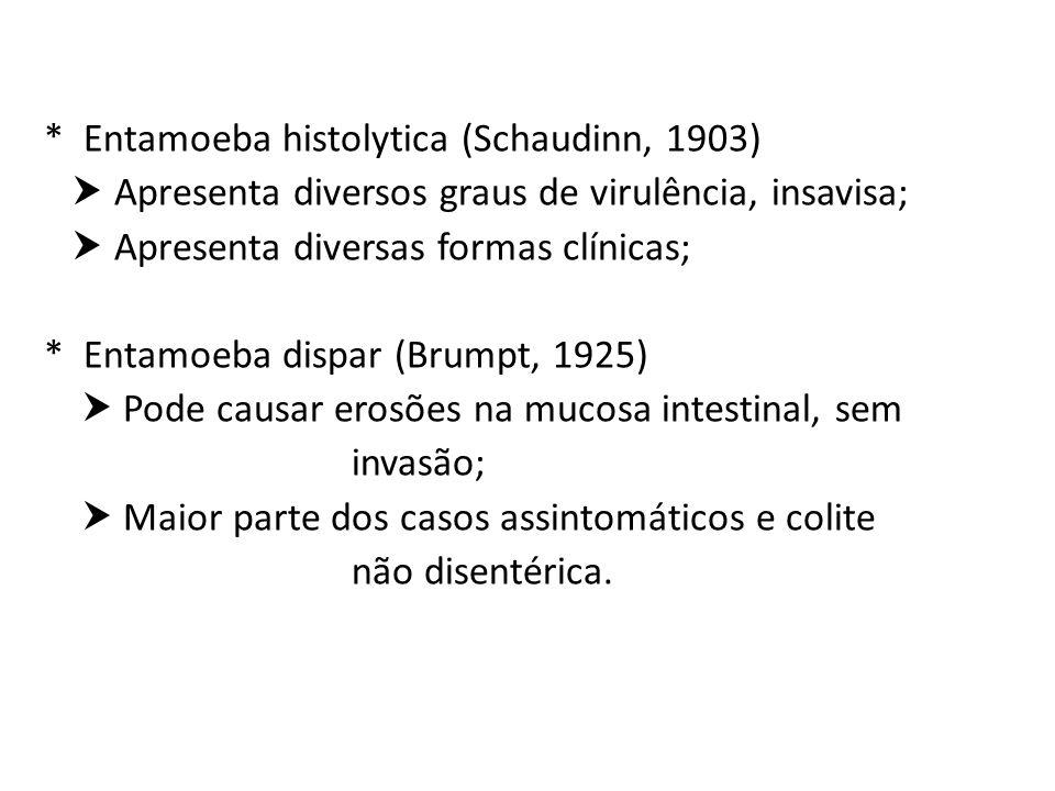 * Entamoeba histolytica (Schaudinn, 1903) Apresenta diversos graus de virulência, insavisa; Apresenta diversas formas clínicas; * Entamoeba dispar (Br