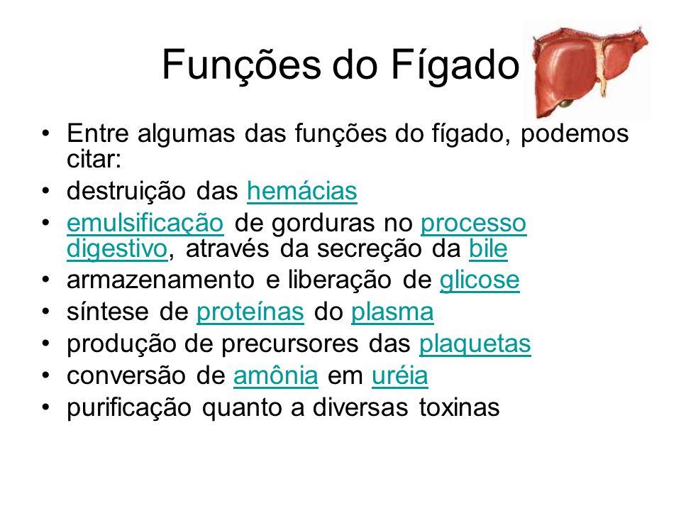 Funções do Fígado Entre algumas das funções do fígado, podemos citar: destruição das hemáciashemácias emulsificação de gorduras no processo digestivo,