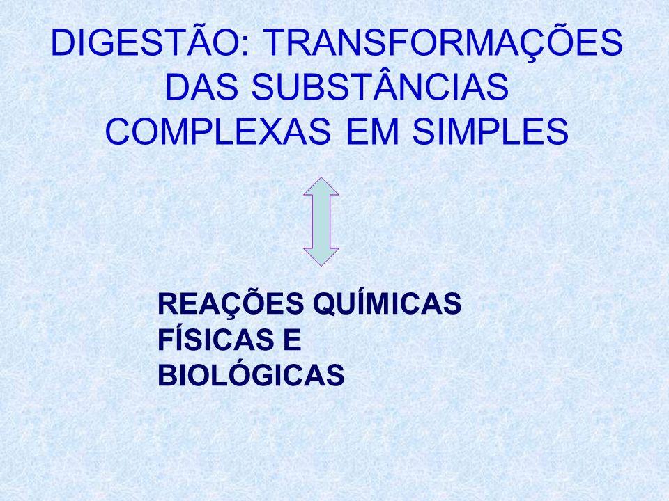 DIGESTÃO: TRANSFORMAÇÕES DAS SUBSTÂNCIAS COMPLEXAS EM SIMPLES REAÇÕES QUÍMICAS FÍSICAS E BIOLÓGICAS