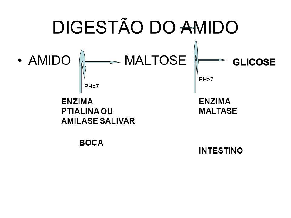 DIGESTÃO DO AMIDO AMIDO MALTOSE PH=7 ENZIMA PTIALINA OU AMILASE SALIVAR GLICOSE PH>7 ENZIMA MALTASE INTESTINO BOCA