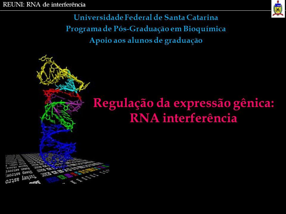 Universidade Federal de Santa Catarina Programa de Pós-Graduação em Bioquímica Apoio aos alunos de graduação Regulação da expressão gênica: RNA interf