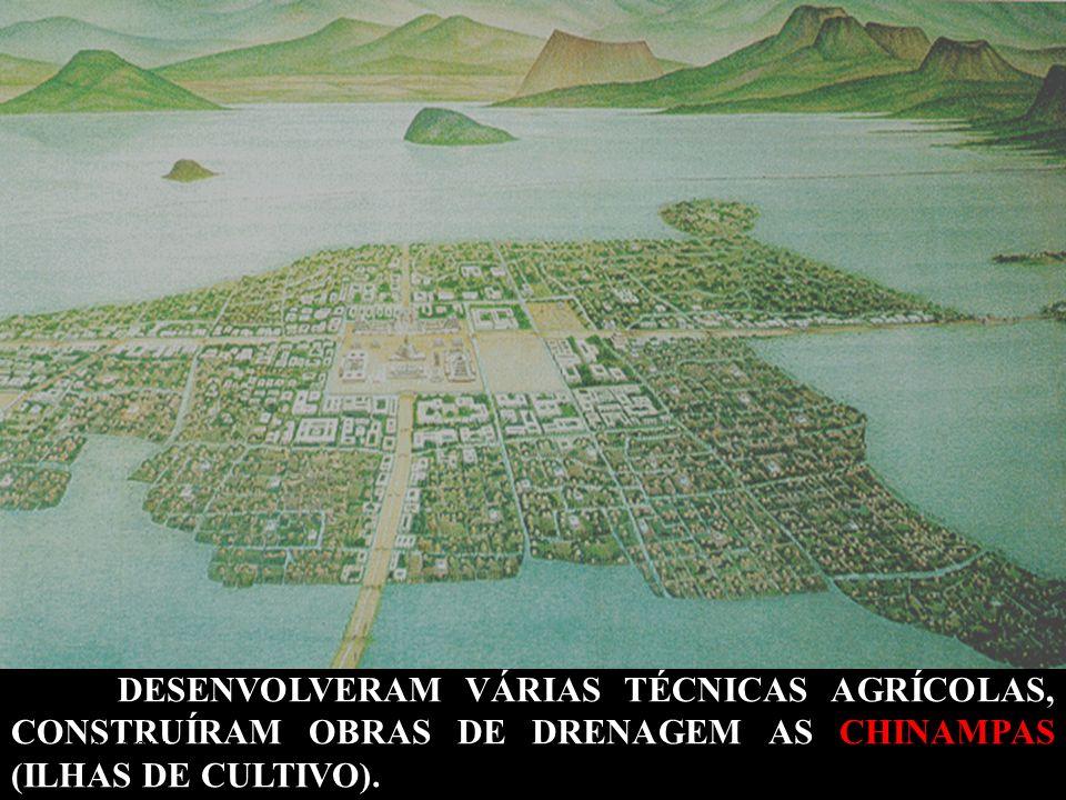 DESENVOLVERAM VÁRIAS TÉCNICAS AGRÍCOLAS, CONSTRUÍRAM OBRAS DE DRENAGEM AS CHINAMPAS (ILHAS DE CULTIVO). 8/5/201416www.nilson.pro.br