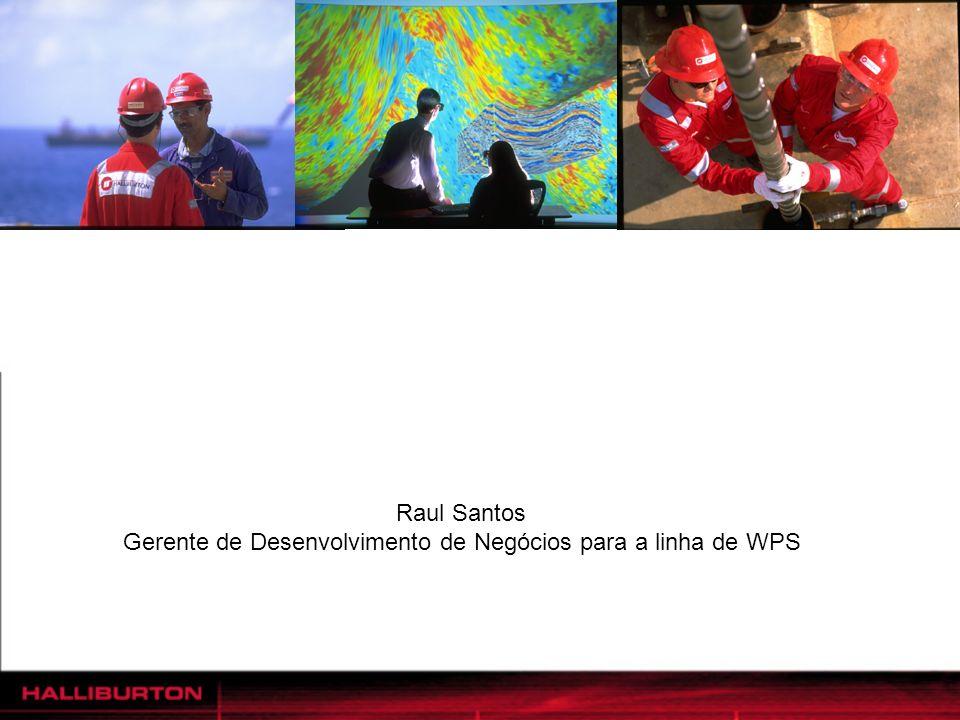 Raul Santos Gerente de Desenvolvimento de Negócios para a linha de WPS