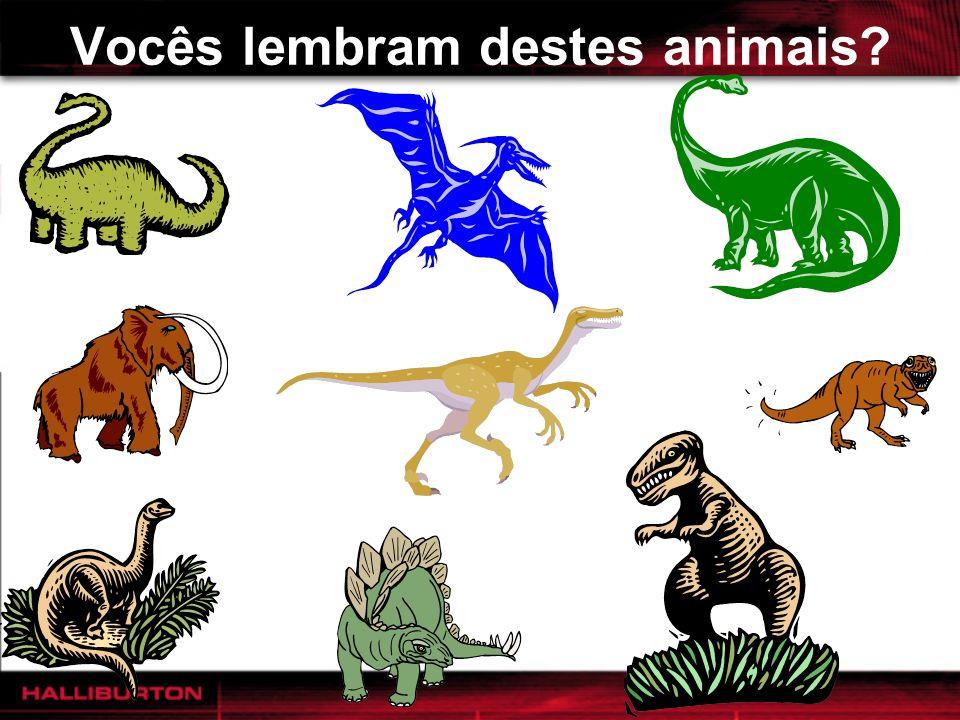 Vocês lembram destes animais?