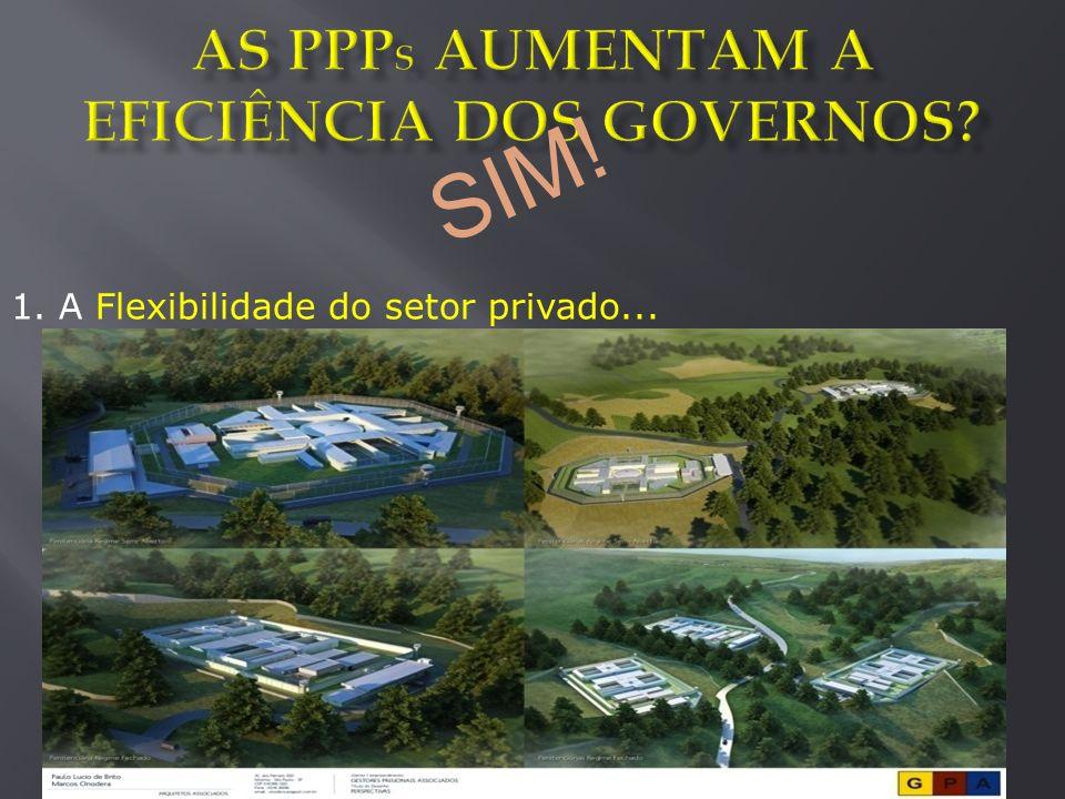 Ao final de 2012, o Programa PPP de Minas Gerais: Atraiu R$2.2 Bilhões de investimento privado em infraestrutura pública Contribuiu para a modernização de setores historicamente avaliados como ineficientes Acumulou conhecimento necessário ao aprimoramento contínuo dos negócios