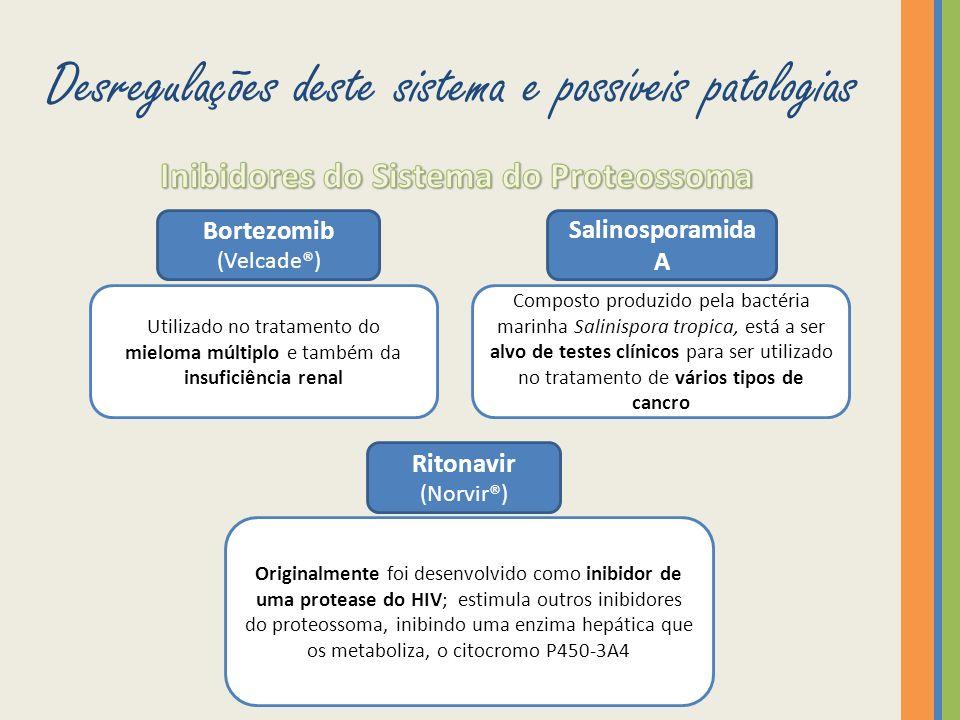Desregulações deste sistema e possíveis patologias Bortezomib (Velcade®) Utilizado no tratamento do mieloma múltiplo e também da insuficiência renal S