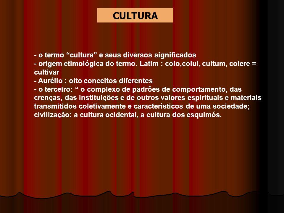 - o termo cultura e seus diversos significados - origem etimológica do termo. Latim : colo,colui, cultum, colere = cultivar - Aurélio : oito conceitos
