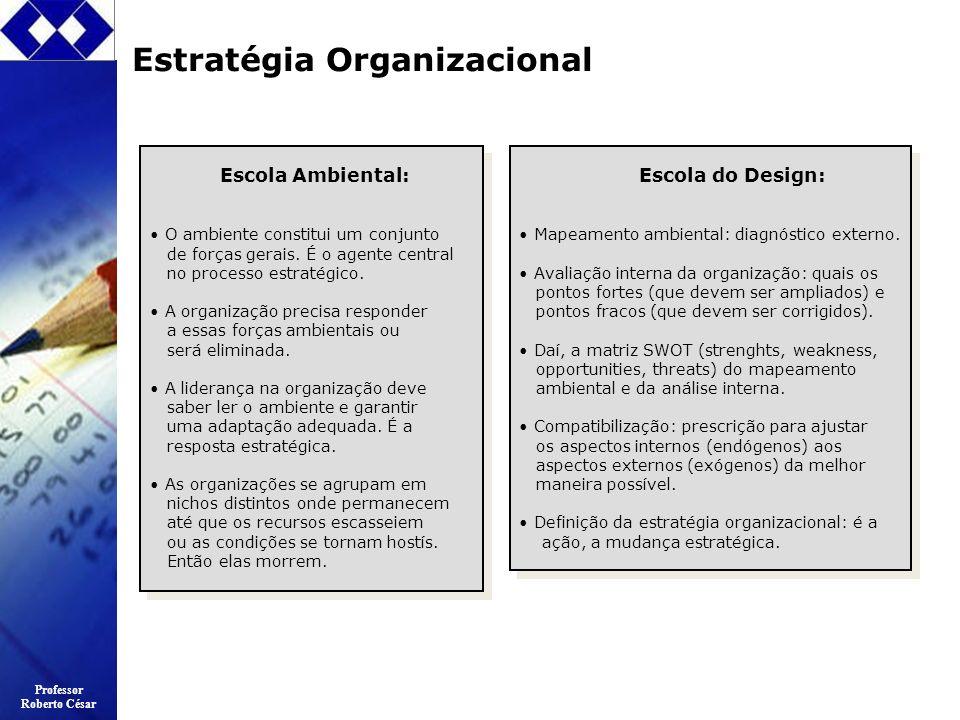 Professor Roberto César Estratégia Organizacional Escola Ambiental: O ambiente constitui um conjunto de forças gerais. É o agente central no processo