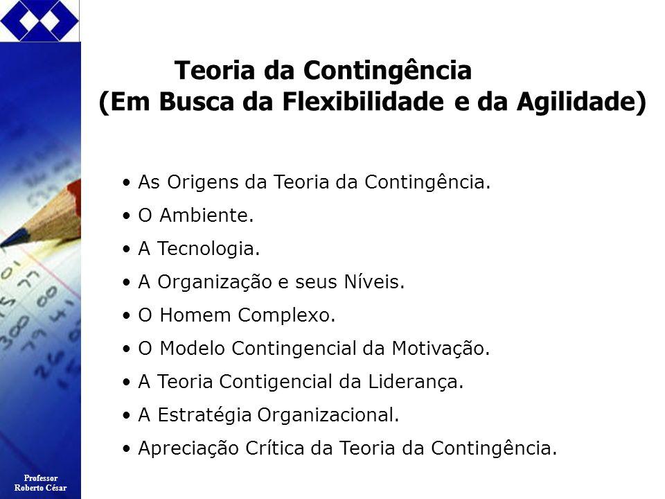 Professor Roberto César Teoria da Contingência (Em Busca da Flexibilidade e da Agilidade) As Origens da Teoria da Contingência. O Ambiente. A Tecnolog