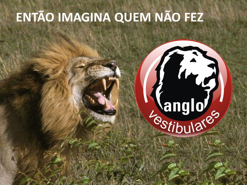 ENTÃO IMAGINA QUEM NÃO FEZ