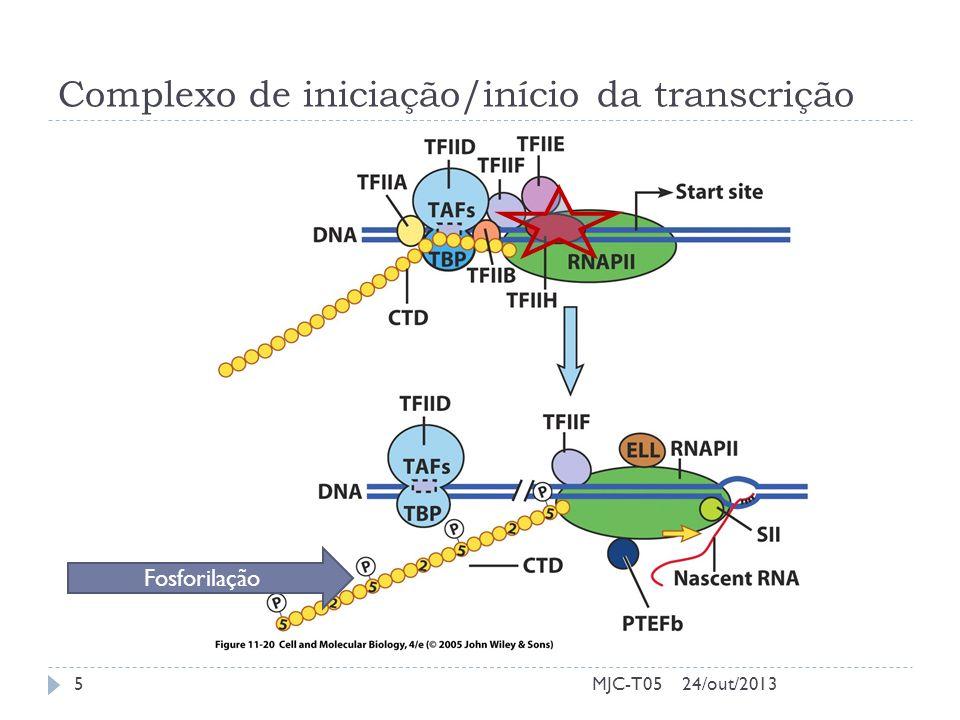Complexo de iniciação/início da transcrição MJC-T05 Fosforilação 24/out/20135