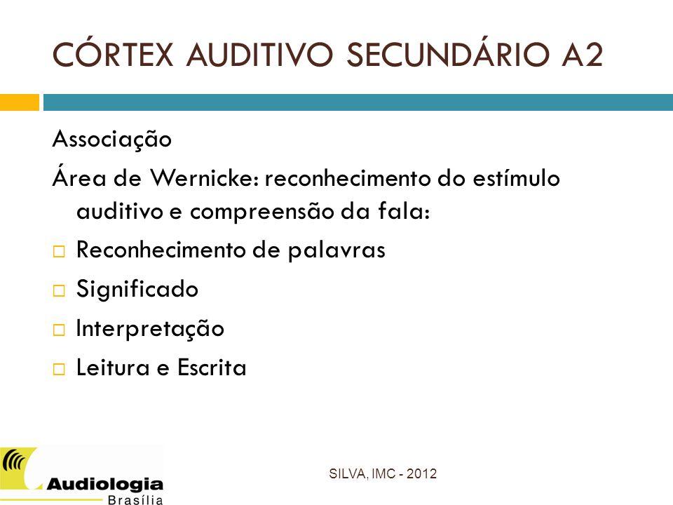 CÓRTEX AUDITIVO SECUNDÁRIO A2 Associação Área de Wernicke: reconhecimento do estímulo auditivo e compreensão da fala: Reconhecimento de palavras Significado Interpretação Leitura e Escrita SILVA, IMC - 2012