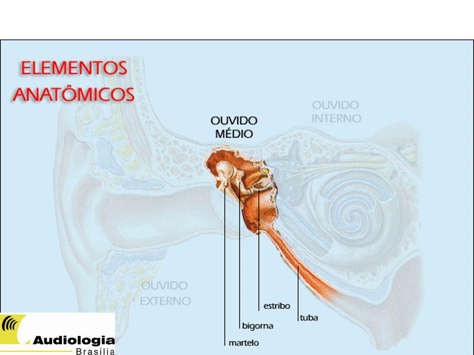 ORELHA MÉDIA Tuba auditiva: proteção, drenagem, aeração e equalização das pressões. A ORELHA