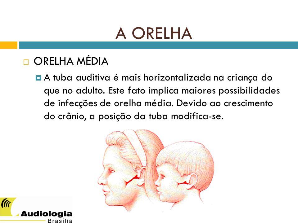 SILVA, IMC - 2012 ORELHA MÉDIA A tuba auditiva é mais horizontalizada na criança do que no adulto.