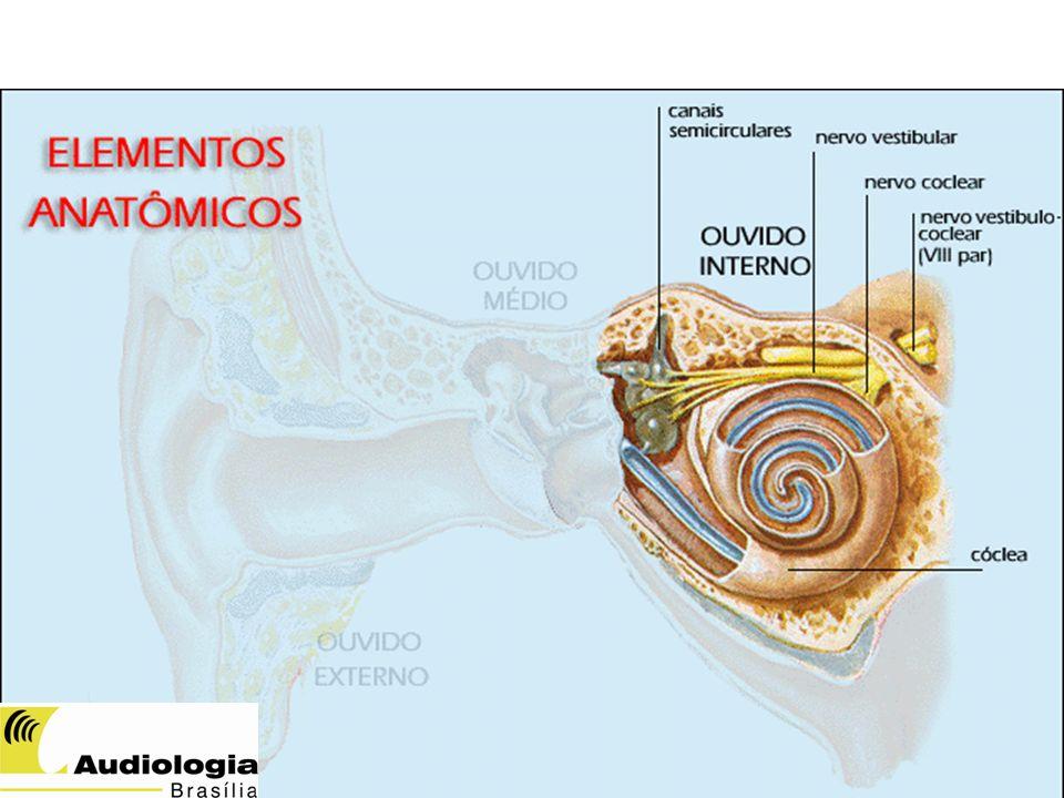 VIAS AUDITIVAS Nervo Auditivo: quebra do sinal acústico em seus componentes, organização tonotópica Núcleo coclear: Realce da modulação do sinal Complexo olivar superior: Codificação da informação binaural (localização da fonte sonora) SILVA, IMC - 2012