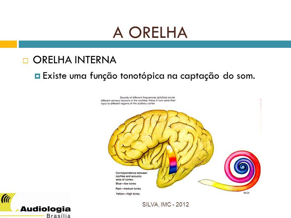 SILVA, IMC - 2012 ORELHA INTERNA Existe uma função tonotópica na captação do som. A ORELHA