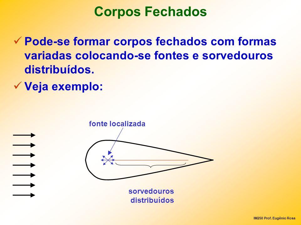 IM250 Prof. Eugênio Rosa Corpos Fechados Pode-se formar corpos fechados com formas variadas colocando-se fontes e sorvedouros distribuídos. Veja exemp