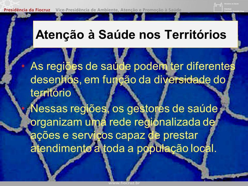 Vice presidência de ambiente, atenção e promoção da saúde OBRIGADO Valcler Rangel Fernandes valcler@fiocruz.br